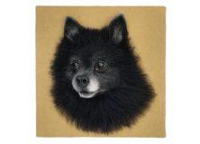 thumbs_3D_wool_portrait_black_spitz_04