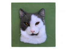 thumbs_white_grey_cat_02-2
